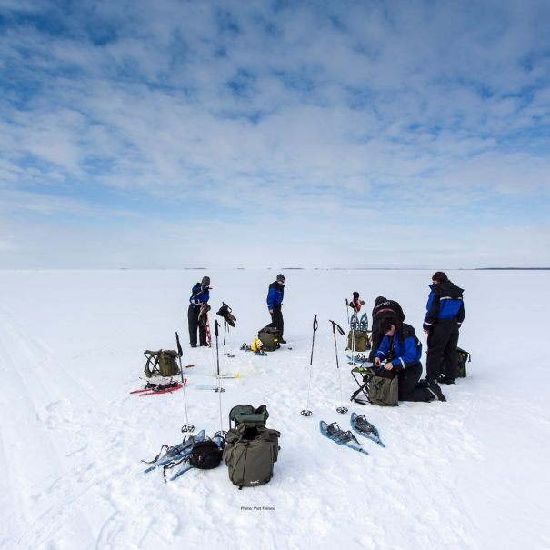 Ice Fishing Tours in Ivalo, Inari, Saariselka and Kakslauttanen
